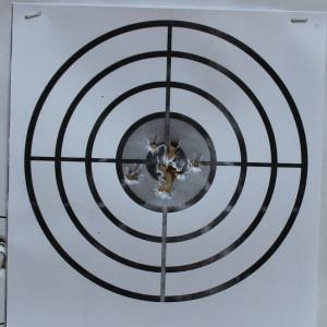 Beretta Pico Target