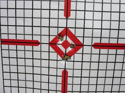 10 Yards – 5 Rounds (Iron Sights Without Sling)